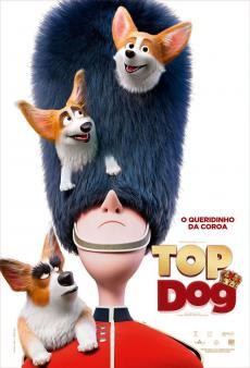 Corgi - Top Dog
