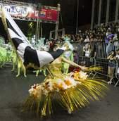 Desfile das escolas de samba de Curitiba — 2019