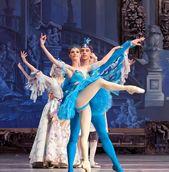 Kiev Ballet - 150 Anos
