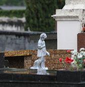 Cemitério São Francisco de Paula (Municipal)