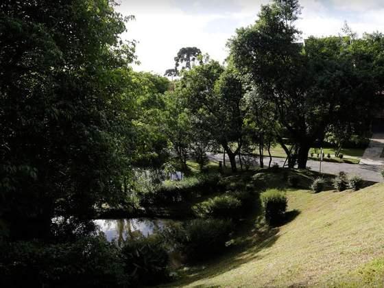 Bosque Gutierrez