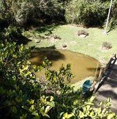 Parque Nascentes do Belém
