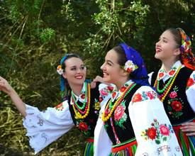 Festa de polaco em Araucária terá 4 dias de música e gastronomia