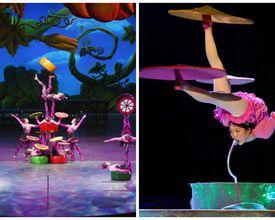 Turnê de dois circos chineses em Curitiba começa nesta quinta-feira (17). Escolha o seu!