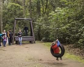 Bosque com trilha de aventura para crianças é reaberto em Curitiba