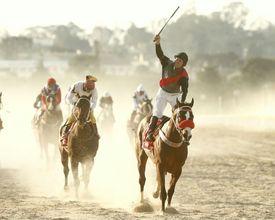 Grande Prêmio Paraná: aposte na corrida de cavalos neste domingo (24)