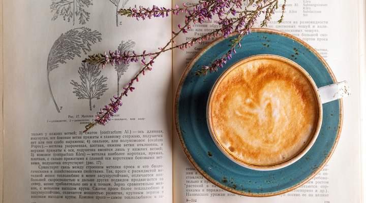 6 livrarias que misturam café, diversão e arte
