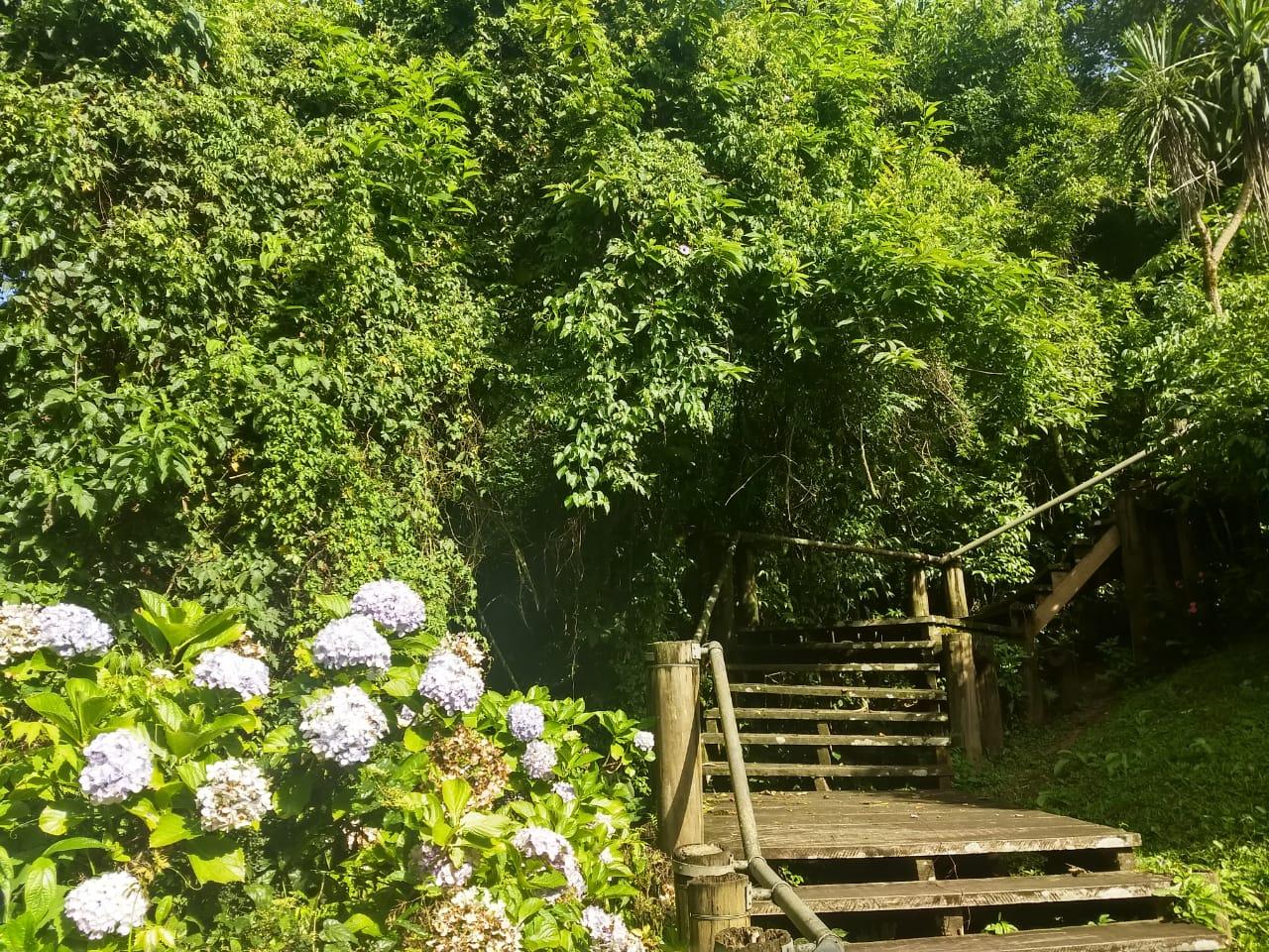 Escadaria ao lado da margem