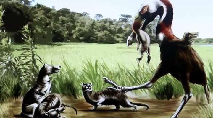 Em novo parque, curitibanos poderão conhecer fósseis de 40 milhões de anos