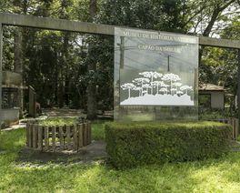 Museu de História Natural em Curitiba pode ser um passeio divertido e cheio de aprendizado