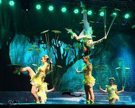 Dois prestigiados circos chineses se apresentam em Curitiba em agosto; ingressos já estão à venda